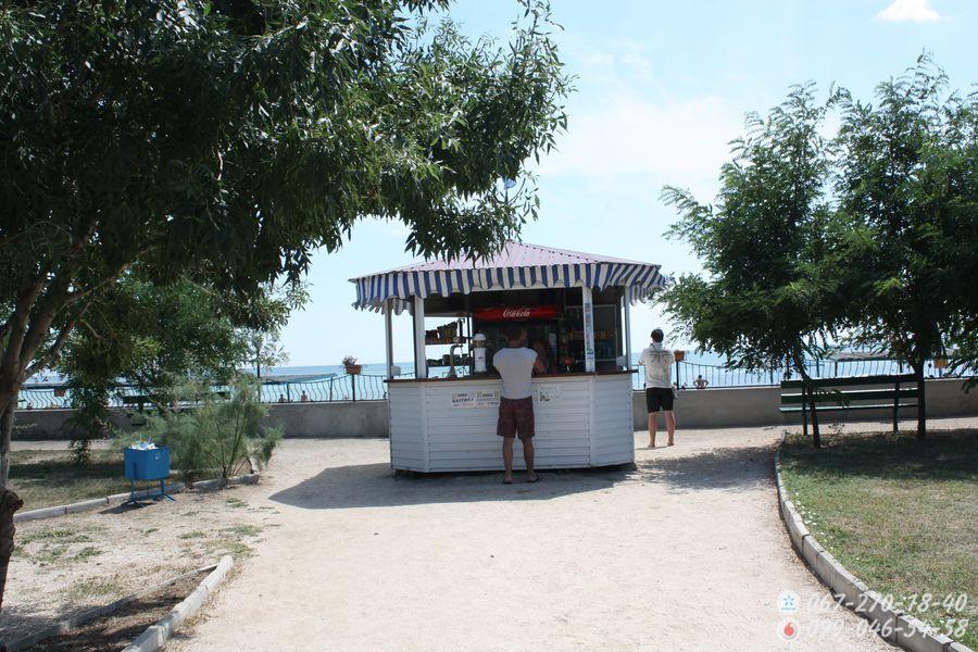 Бар возле пляжа Альтанка